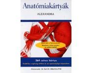 dr. Albertitne H. Kurt: Anatómiakártyák - 264 színes kártya - Praktikus segítség otthon és az egészségügyi képzésben