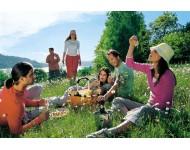 Picknickezés - Kategória